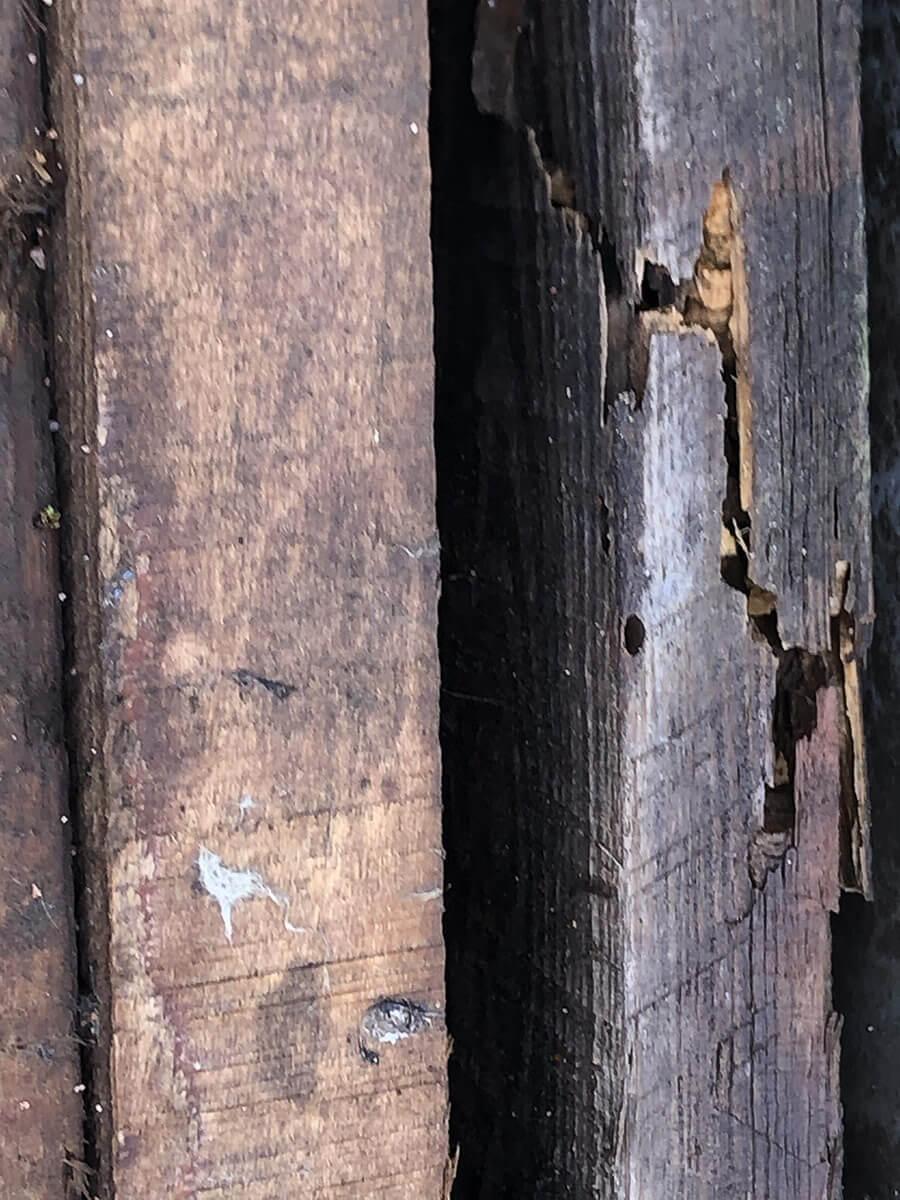 Renov Toiture Lorraine traitement-charptente2 Traitement de charpente
